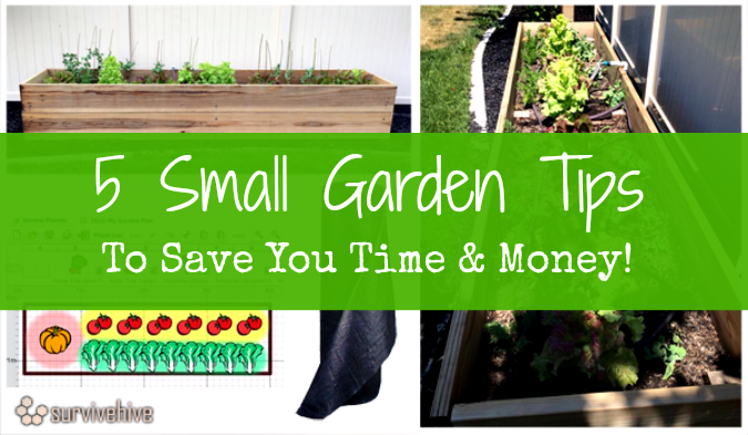 5 small garden tips to save you time money hostile hare - Practical tips to make money from gardening ...