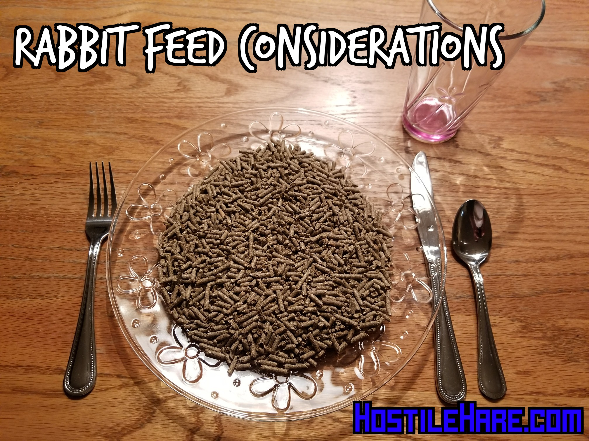 There are many things to consider when choosing rabbit feed